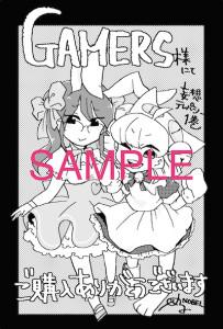 sample_GAMERS